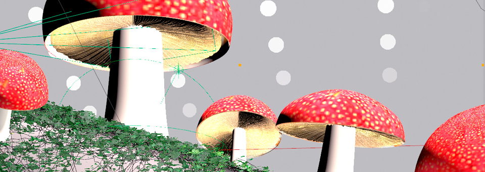 AG_Mushrooms_Process1
